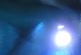 opalescent-soul.jpg